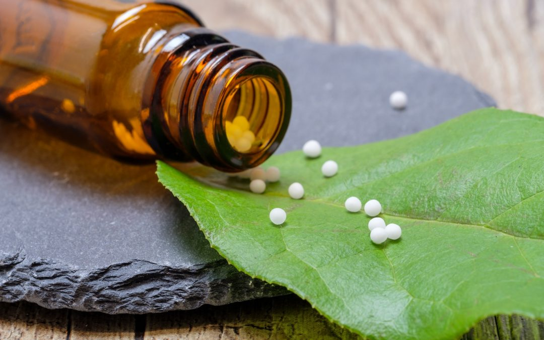 What Everyone Wants to Know About Homeopathy Webinar